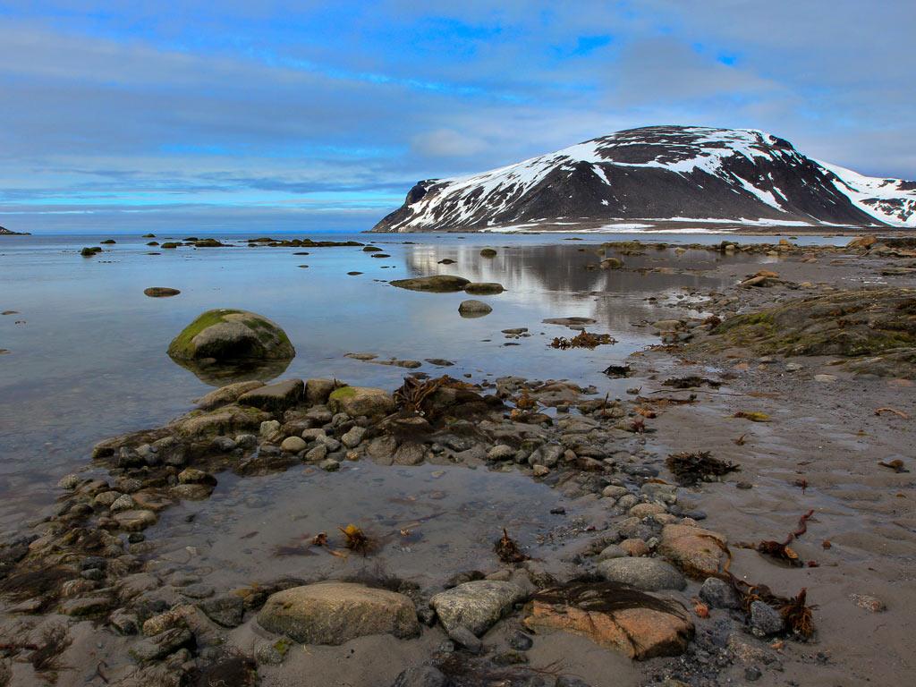 北极深呼吸-探访北极熊 环斯瓦尔巴群岛探险之旅12日