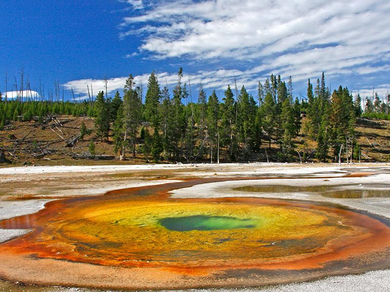 【自然与人文】美国西海岸西雅图+国家公园探寻之旅