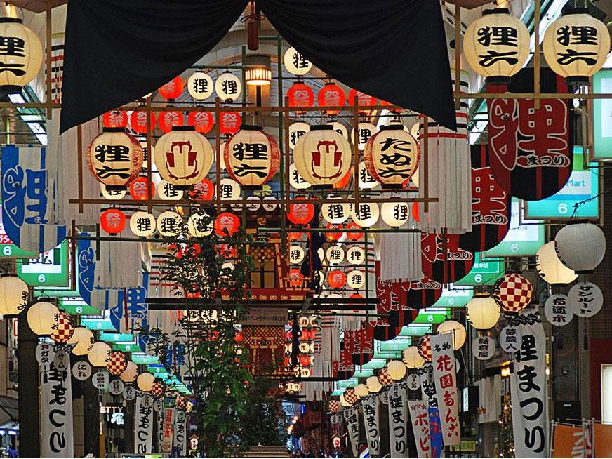 浪漫双城   北海道东京亲子赏花