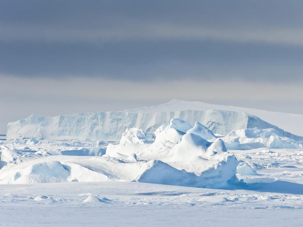 """走进企鹅王国--认识""""南极之王"""" 深度探秘南极三岛之旅24日"""